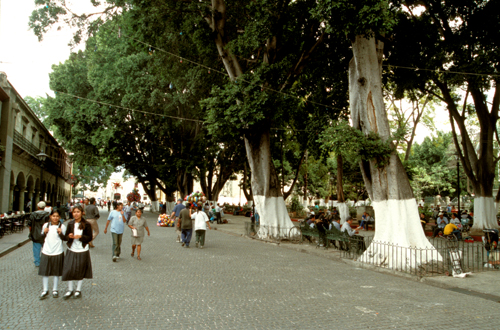Central square, Oaxaca City, Mexico.