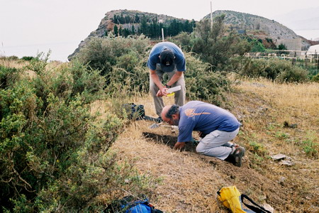Collecting <i>Monomorium subopacum<i> in the Mediterreanan coast. Christian Peeters (standing) and Alberto Tinaut.