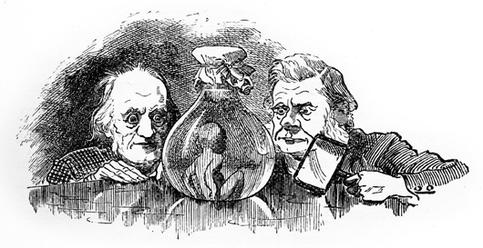 Owen and Huxley examine a water baby (Illustration from the children's novel The Water-Babies, A Fairy Tale for a Land Baby, by Charles Kingsley. Source: Wikimedia commons)